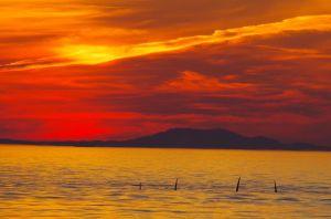best killer sunset 1